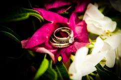 Ringe der diamantenen Hochzeit auf purpurroter Blume Stockfotografie