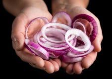 Ringe der roten Zwiebel in den Frauenhänden auf schwarzem Hintergrund stockfotografie