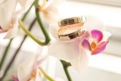 Ringe u. Blumen Lizenzfreies Stockfoto