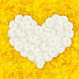 Ringelblume blüht Herzrahmen Stockfoto
