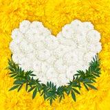 Ringelblume blüht Herzrahmen Stockbild