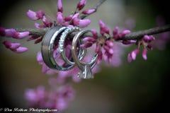 Ringen Royalty-vrije Stock Afbeelding