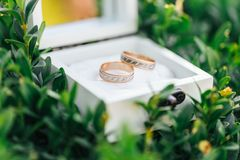 Ringen in een houten doos Stock Afbeeldingen