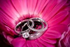 Ringen op purpere bloem royalty-vrije stock afbeeldingen