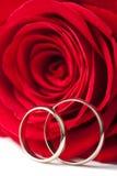 Ringen van de gouden bruiloft en rood namen geïsoleerd toe Royalty-vrije Stock Foto's