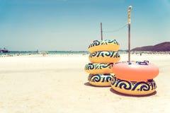 Ringlife on sand at tropical beach stock photos