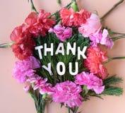 Ringrazia la parola di legno sulla struttura dei garofani dei fiori freschi sulla c morbida immagini stock