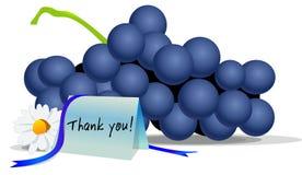 Ringraziamenti che danno l'uva royalty illustrazione gratis