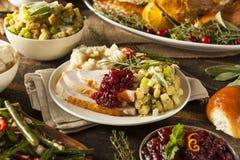 Ringraziamento casalingo Turchia su un piatto Fotografia Stock Libera da Diritti