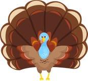 Ringraziamento felice Turchia Fotografia Stock Libera da Diritti