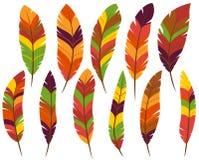 Ringraziamento o piume colorate caduta illustrazione di stock