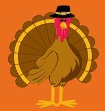 Ringraziamento Turchia del fumetto Fotografia Stock