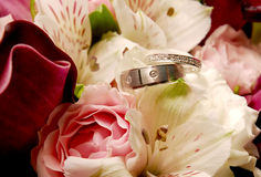 Rings. Wedding rings Stock Photos
