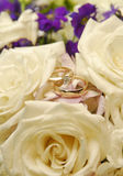 Rings. Wedding rings Royalty Free Stock Image