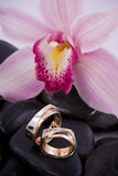 Rings. Wedding rings, orchid and black stones Stock Images