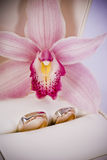Rings. Wedding rings and a beautiful flower Stock Image