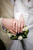 Rings. A wedding etude is in colors, weddings rings Stock Image