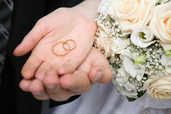 The rings Stock Photography