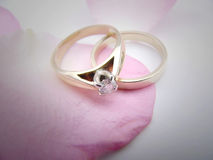 Rings. On rose petal ,different prespective Stock Photos