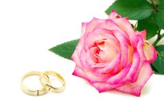 Rings And Rose Royalty Free Stock Photos