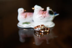 Rings and birds Royalty Free Stock Photos