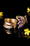 Rings on black Royalty Free Stock Photography