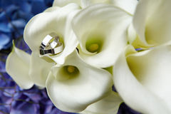 Rings on bouquet. Beautiful rings on natural flower Stock Image