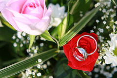 Rings on bouquet. Beautiful rings on natural flower Stock Photo