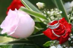 Rings on bouquet. Beautiful rings on natural flower Stock Photography