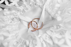 Rings on bridal  pillow Stock Photography