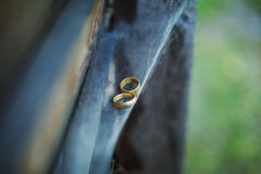 Rings on cobweb Royalty Free Stock Photography