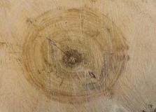 Rings on the cut surface of the tree. abstraction. pattern royalty free stock images