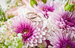 Rings on a flowers Royalty Free Stock Photography