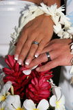 Rings and flowers. Wedding rings and Hawaiian flowers Royalty Free Stock Photo