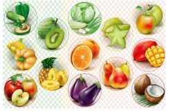 Rings with fruits and vegetables. Colorful rings with fruits and vegetables on a transparent background. Vector illustration stock illustration