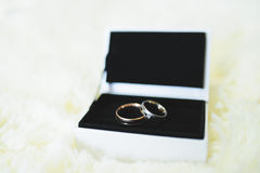 Rings in Gift Box Stock Image