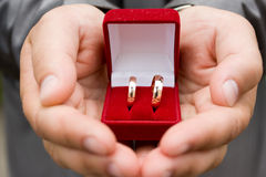 Rings in groom's hands Royalty Free Stock Images
