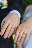 Rings on hands. Rings on the hands of bride and groom Royalty Free Stock Images