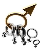 Rings the man and women Royalty Free Stock Images