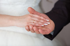 Rings newlyweds on their hands. Gold wedding rings on the hands of the newlyweds Stock Photos