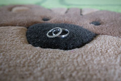 Rings on patterned carpet cat Stock Images
