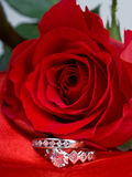 Rings and red rose Stock Photo