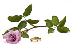 Rings and rose. Royalty Free Stock Images