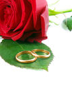 Rings with rose Royalty Free Stock Photo