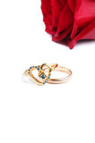 Rings with rose Royalty Free Stock Images