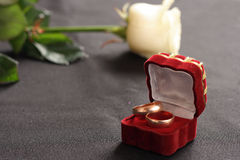 Rings and rose. On table 2 golden rings and rose Stock Photography