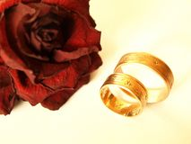 Rings & Rose Stock Photography
