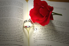 Rings and Rose on Bible. Pair of wedding rings and a red rose on open Bible stock photo