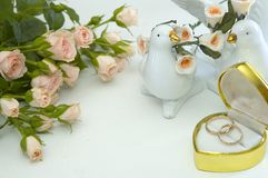 Rings and roses. Wedding rings and roses Stock Photos