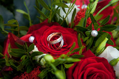 Rings on roses Royalty Free Stock Photography